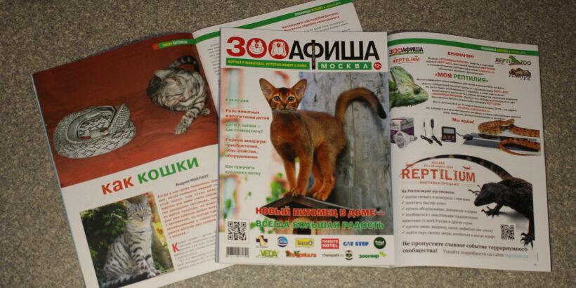 Статья как кошки опубликована в Зооафише