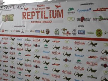 Рептилиум весенний 2019